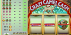 Crazy Camel Cash
