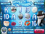 Whale O Winnings Slot