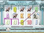 White Buffalo Slot