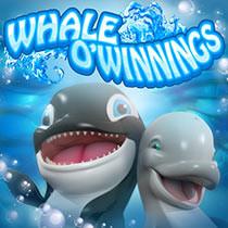 Whale O Winnings Mobile