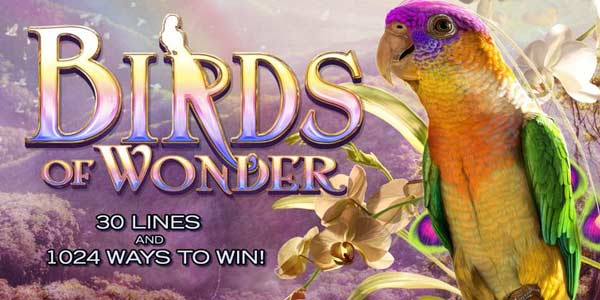 Birds of Wonder Slot