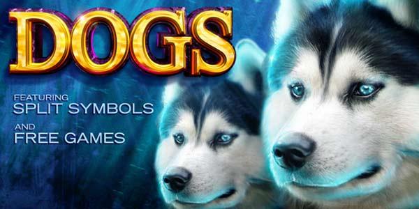 Dogs Slot