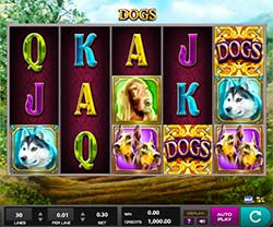 Play Dogs Slot
