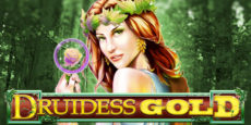 Druidess Gold Slot