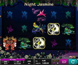 Play Night Jasmine Slot