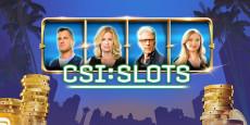 CSI Slot