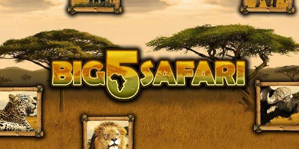 Big 5 Safari