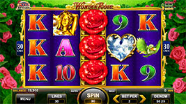 Wonder Rose Slot