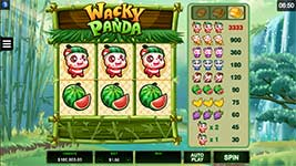 Wacky Panda