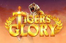 Tiger's Glory